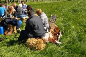 picknick 6